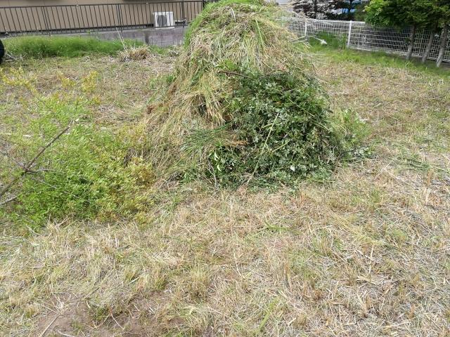 草取り後の雑草の山