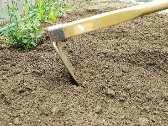 クワで土を耕す