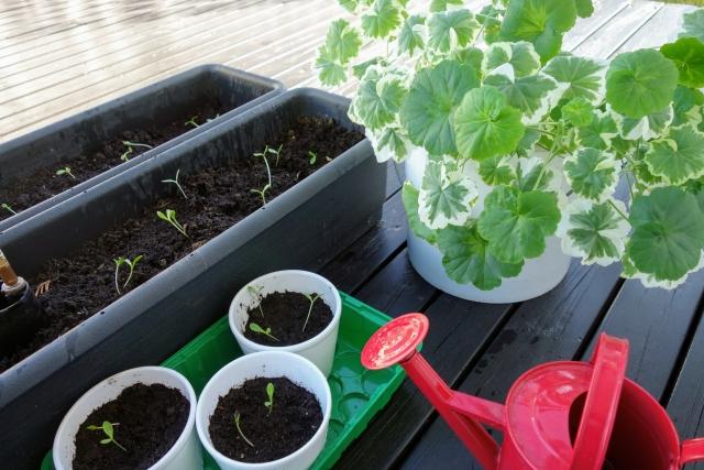 植木鉢とプランター