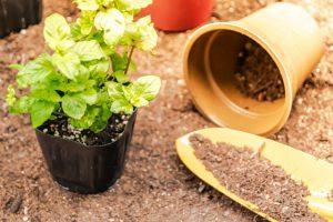 植木鉢と土の容量