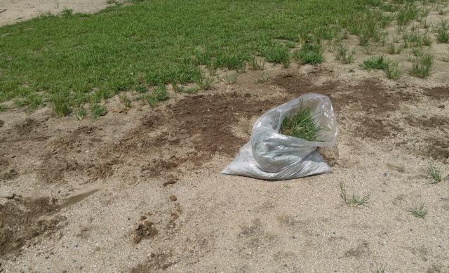 雑草堆肥の作り方