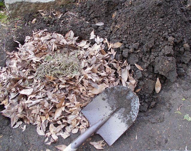 落ち葉で腐葉土を作る